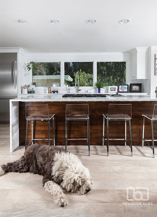 Kitchen with large sheep dog photo by Brandon Alms Photography