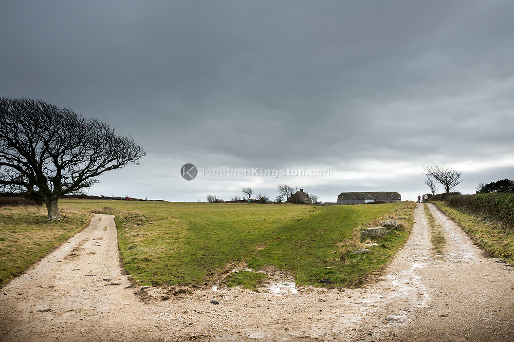 Two graveled roads diverge on National Trust land near Swanage, England.