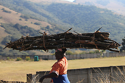 South Africa - Durban - 23 June 2020 - A woman in Mbhava, in Swayimane carries a huge bundle of firewood over her head on Tuesday. This area, near Pietemaritzburg is plagued by lack of development. People rely on firewood to cook and keep warm during this winter<br /> Picture: Doctor Ngcobo/African News Agency(ANA)
