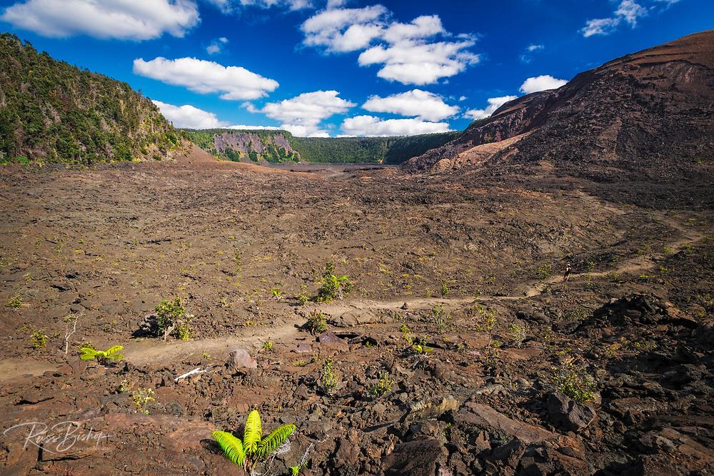Hiker on the Kilauea Iki trail in the caldera, Hawaii Volcanoes National Park, Hawaii USA