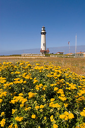 Pigeon Point Lighthouse, major example of  lighthouse architecture, now a Youth Hostel,.San Mateo Coast of California, south of San Francisco.  Photo copyright Lee Foster, 510-549-2202, lee@fostertravel.com, www.fostertravel.com. Photo 476-30935