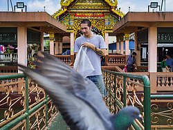 October 3, 2018 - Bangkok, Thailand - A pigeon flies past a man at the Wat Devaraj Kunchorn Pier in Bangkok. Authorities in the Thai capital have banned the feeding of wild pigeons. They are trying the get the pigeon population under control. They've imposed a fine of up to 25,000 Baht (about $770US) and/or up to three months in jail for feeding pigeons. Government officials have ordered that signs be put up to warn people of the dangers and disease risk of pigeons. (Credit Image: © Sean Edison/ZUMA Wire)