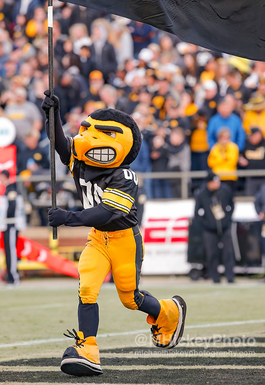 WEST LAFAYETTE, IN - NOVEMBER 03: The Iowa Hawkeyes mascot carries a flag across the end zone after a touchdown against the Purdue Boilermakers at Ross-Ade Stadium on November 3, 2018 in West Lafayette, Indiana. (Photo by Michael Hickey/Getty Images)
