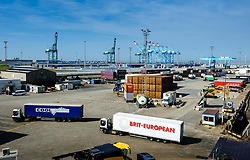 General view of the docks at Zeebrugge, Belgium<br /> <br /> (c) Andrew Wilson | Edinburgh Elite media