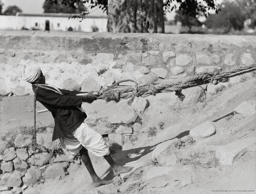 Water Drawer Being Pulled Up Near Guntakal, India, 1929