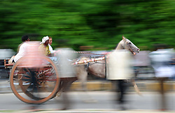 July 31, 2017 - Allahabad, Uttar Pradesh, India - Allahabad: People take part in horse cart racing Gehre Bazi on the streets of Sangam City on July 31, 2017 in Allahabad, India. The traditional sport is organized every year on every Monday of Sawan Month. (Credit Image: © Prabhat Kumar Verma via ZUMA Wire)