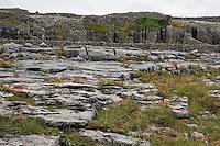 Field of limestone rock on Inis Oirr the Aran Islands Galway Ireland