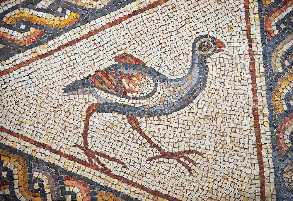 A bird from the 3rd century Roman mosaic villa floor from Lod, near Tel Aviv, Israel. The Roman floor mosaic of Lod is the largest and best preserved mosaic floor from the levant region along the eastern Mediterranean coast. It is unclear whether the owners were Jewish, Christian or pagan but either way they would have been wealthy to own such a magnificent floor. The Shelby White and Leon Levy Lod Mosaic Centre, Lod, Israel. .<br /> <br /> If you prefer to buy from our ALAMY STOCK LIBRARY page at https://www.alamy.com/portfolio/paul-williams-funkystock/roman-mosaic.html. Type -    lod  - into LOWER SEARCH WITHIN GALLERY box - Refine search by adding a subject, place, background colour, museum etc.<br /> <br /> Visit our ROMAN WORLD PHOTO COLLECTIONS for more photos to download or buy as wall art prints https://funkystock.photoshelter.com/gallery-collection/The-Romans-Art-Artefacts-Antiquities-Historic-Sites-Pictures-Images/C0000r2uLJJo9_s0