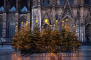 decorated Christmas trees on Roncalliplatz in front of the cathedral during the Corona Pandemic, Cologne, Germany. There is usually a big Christmas market here at this time.<br /> <br /> geschmueckte Weihnachtsbaeume auf dem Roncalliplatz vor dem Dom waehrend der Corona Pandemie, Koeln, Deutschland. Normalerweise ist hier zu dieser Zeit ein grosser Weihnachtsmarkt.