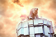 Glastonbury Festival, 2015.<br /> Polar bear on top of a pile of old fridges: A sculture by Joe Rush , alerting to the dangers of the melting of the ice cap,