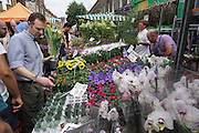 Plant Perfections Market Stall at Columbia Market, from Hull Hill Farm, Avely Road, Upminster Essex<br /><br />Every Sunday morning at Columbia Road Flower market, Hackney London. Probably one of London's most hip and trendy East End markets. The ambience is great, packed full with people who love and want to buy flowers, you can hardly move.<br /><br />British local flowers, grown nearby, count for around 10% of the UK market, traveling less than a tenth of their foreign counterparts which are often flown in from abroad. Nearly 90% of the flowers sold in the UK are actually imported, and many travel over 3000 miles. Local flower farms help biodiversity, providing food and habitat to a huge variety of wildlife, insects including butterflies, bugs, and bees. Often local flower farmers prefer to grow organic rather than using pesticides. British flowers bloom all the year around, even in the depths of winter, and there are local flower farms throughout the country.<br /><br />Many people like the idea of the just picked from the garden look, and come to flower farms throughout Britain to pick their own for weddings, parties and garden fetes. Others come for the joy of a day out in the countryside with their family. Often a bride and her family will come to pick the flowers for her own wedding, some even plant the seeds earlier in the year.