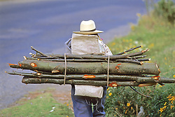 Carrying Wood