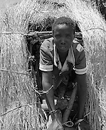 Karamoja, Uganda , Africa. - women making grain bin