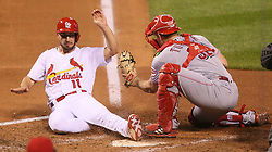 September 12, 2017 - St Louis, MO, USA - The St. Louis Cardinals' Paul DeJong (11) scores on a two-run double by Jose Martinez past Cincinnati Reds catcher Stuart Turner in the fourth inning on Tuesday, Sept. 12, 2017, at Busch Stadium in St. Louis. The Cards won, 13-4. (Credit Image: © Chris Lee/TNS via ZUMA Wire)