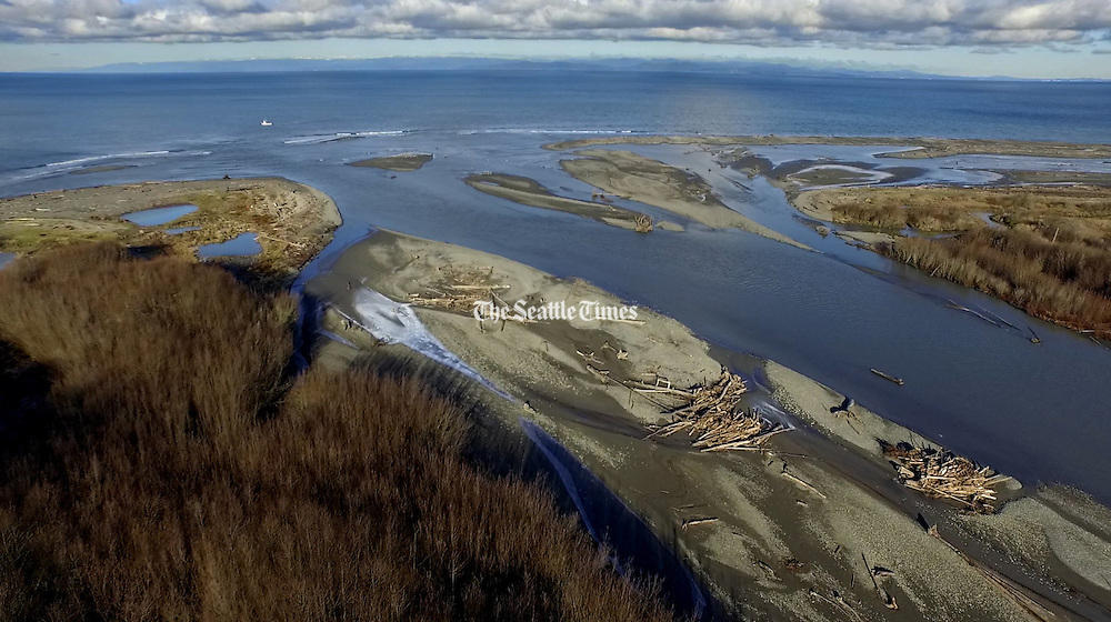 After years of sediment being released from the deconstruction of the Elwha and Glines Canyon Dam, the mouth of the Elwha River is forming a giant beach. (Steve Ringman / The Seattle Times)