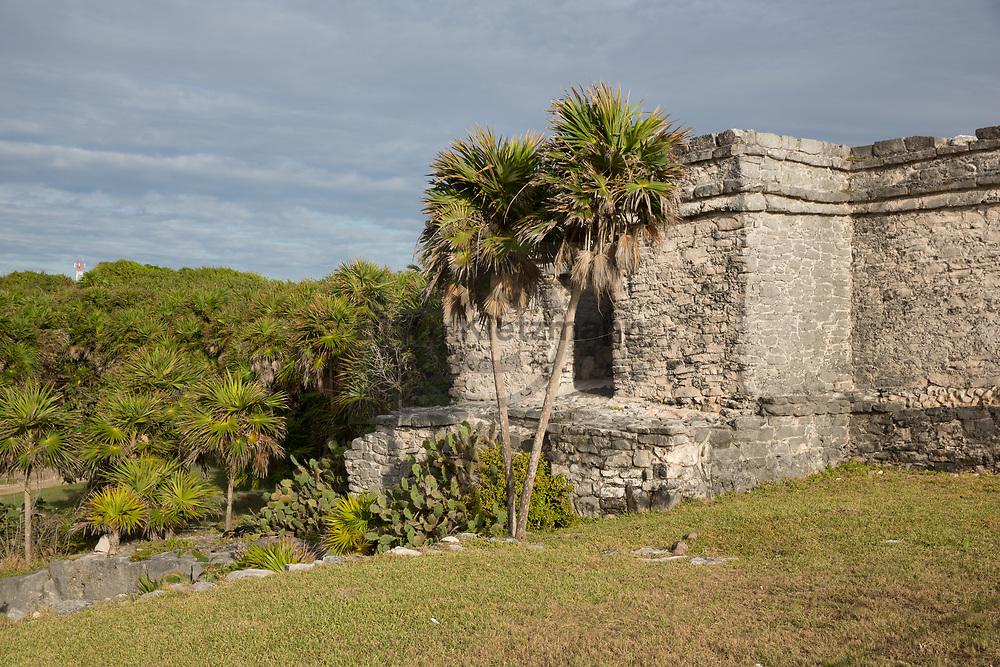 Tulum, Mexico - 17.12.2018<br /> <br /> The Mayan site of Tulum on the Mexican Caribbean coast on the Yucatán Peninsula. <br /> <br /> Die Maya Staette Tulum an der mexikanischen Karibikkueste auf der Yucatán Halbinsel. <br /> <br /> Photo: Bjoern Kietzmann