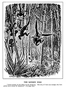 """The Monkey Folk. """"Always pecking at new things are the bandar-log. This time, if I have any eyesight, they have pecked down trouble for themselves."""" The Jungle Book."""