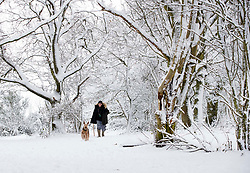 © Licensed to London News Pictures. 01/02/2019. Coombe Hill, UK. A man walks his dog on Coombe Hill, Buckinghamshire after overnight snow falls and continuing low temperatures. Photo credit: Peter Macdiarmid/LNP