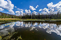 Warm Summer days in the Uintah Mountains provide perfect opportunities for dramatic reflections in the lakes of the Ashley National Forest.