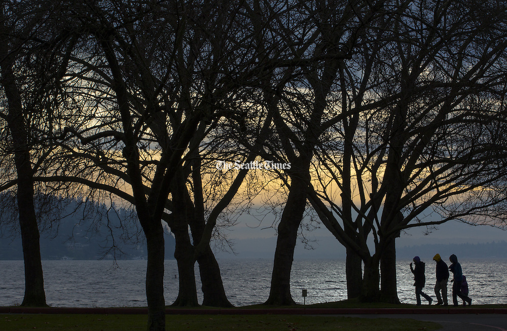 A group of people walks along the shore of Lake Washington early morning in Seattle's Seward Park. (Ellen M. Banner / The Seattle Times)