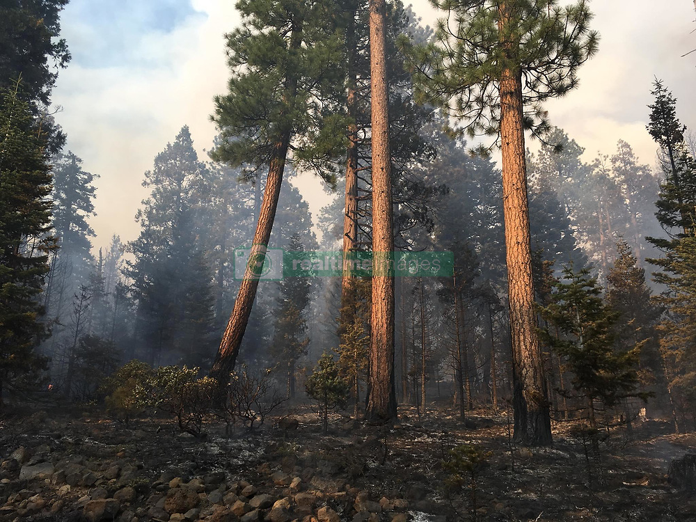 July 31, 2018 - California - The Whaleback Fire increased in acres overnight as the unburned fuels in the center of the fire continued to burn out. The fire has backed down to Eagle Lake on the eastern edge. The most active area of the fire is to the northwest. Weather today continues to be hot and dry, with increasing afternoon winds from the west-south-west. started: Friday July 27th, 2018 approx. 01:30 PM Size: 18,342 Acres. Contained: 40 percent (Credit Image: © Michael Piper/Cal Fire via ZUMA Wire/ZUMAPRESS.com)