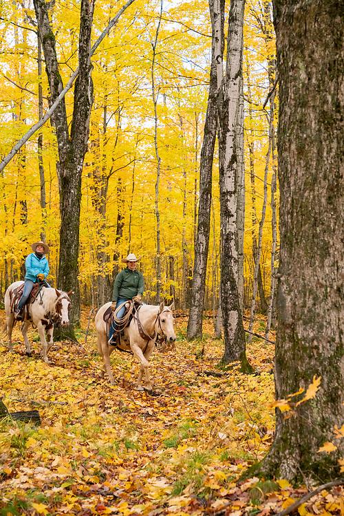Trail riding on horseback near Gwinn, Michigan during autumn.
