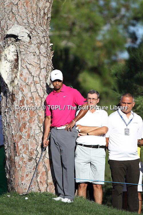 Tiger WOODS (USA) tee shot at 16th par 3 lands close to tree during third round Turkish Airlines Open by Ministry of Culture and Tourism 2013,Montgomerie Course at Maxx Royal,Belek,Antalya,Turkey.