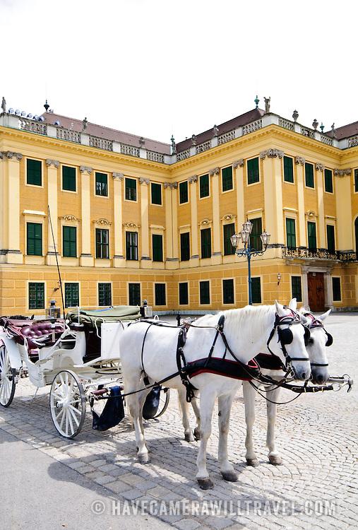 Horses and cart at Schonbrunn Palace, Vienna