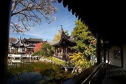 United States, Oregon, Portland, Chinese Garden