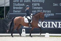 Fry Charlotte, GBR, Graaf Leatherdale T<br /> World Championship Young Dressage Horses <br /> Ermelo 2016<br /> © Hippo Foto - Dirk Caremans<br /> 28/07/16