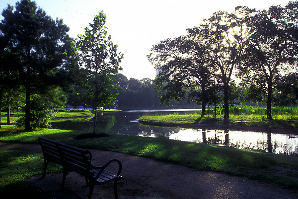 Stock photo of a quiet shaded bench on a pathway along the lake in Hermann Park