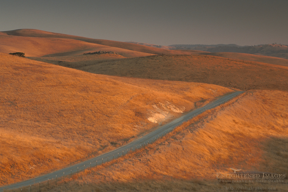 Golden sunset light on rural coutry road through grass hills in summer, Altamont Pass, Alameda County, California