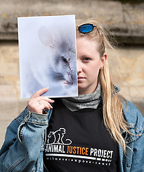 © Licensed to London News Pictures. 01/10/2016. Bristol, UK.  Protest by the Animal Justice Project outside the Wills Memorial Building at the University of Bristol. The protest is against the university's use of animals in research, including cats, rodents, fish and birds which the campaign says have had diseases inflicted on them such as cancer, dementia, and diabetes. According to the campaign, the new Translational Biomedical Research Centre at the University of Bristol will mean researchers investigating surgical techniques on large animals. Photo credit : Simon Chapman/LNP