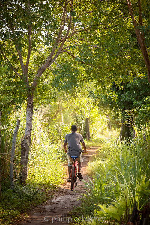 Rear view of a man riding a bicycle, Little Corn Island, Nicaragua
