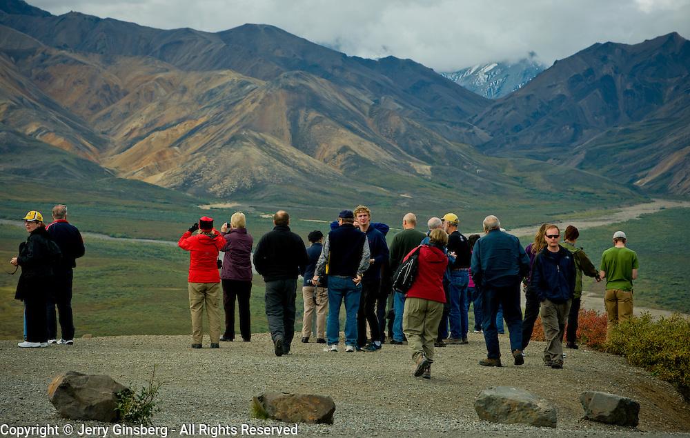 North America, Alaska, Northwest, Denali, Denali National Park, Tourists flock to Polychrome Pass, Denali National Park, Alaska.