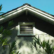 leaves and their shadows hitting the roof of a home.