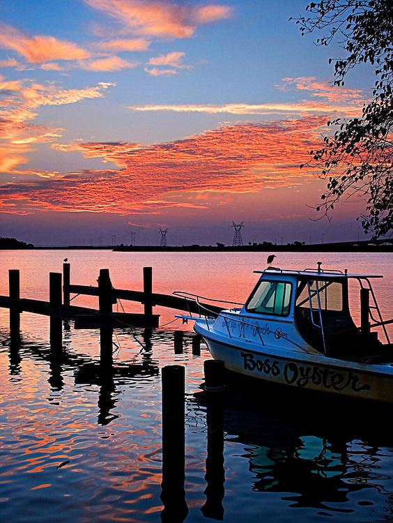 Boss Oyster at Sunrise - Apalachicola, FL