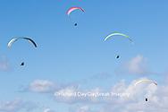 62995-00614 Hang Gliders at Torrey Pines Gliderport La Jolla, CA
