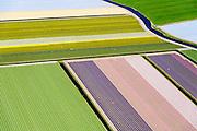 Nederland, Noord-Holland, Heiloo, 20-04-2015; begin van de bloei van bloembollenveld in het voorjaar, omgeving Heiloo.<br /> Beginning of flowering bulbs field in spring.<br /> luchtfoto (toeslag op standard tarieven);<br /> aerial photo (additional fee required);<br /> copyright foto/photo Siebe Swart