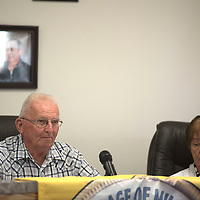 Milan Mayor George Knotts makes his final comments Thursday in the Board of Trustees Meeting meeting in Milan.