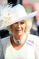 The Duchess of Cornwall during day one of Royal Ascot at Ascot Racecourse.
