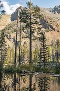 Lundy Canyon Hike
