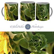 Coffee Mug Showcase 63 -  Shop here:    - Shop here: https://2-julie-weber.pixels.com/products/potential-2-julie-weber-coffee-mug.html