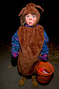 Boy age 5 trick or treating dressed in bear costume for Halloween.  St Paul  Minnesota USA