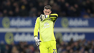 Maarten Stekelenburg of Everton during the Premier League match at Goodison Park, Liverpool. Picture date: December 4th, 2016.Photo credit should read: Lynne Cameron/Sportimage