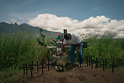 Santiago Pérez, leader of a local group search, reassembles a brick holding a cross marking the mass grave in Nayarit, where he found the rests of his son along other 11 disappeared people. Disappearances became known as a unique kind of evil, denying families closure, leaving them forever tortured by the mystery of their loved ones' fates.