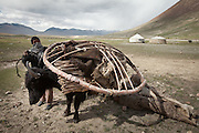 The center piece of the yurt carried by a yak. Ooroon Boi's family arriving to the summer camp during migration..Daily life at the Khan (chief) summer camp of Kara Jylga...Trekking through the high altitude plateau of the Little Pamir mountains (average 4200 meters) , where the Afghan Kyrgyz community live all year, on the borders of China, Tajikistan and Pakistan.