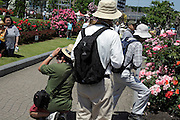 flower garden with people making pictures Japan