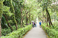 The Chiang Kai-Shek Shilin Residence Park 士林官邸 is a large park with beautiful botanical gardens.