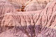 Sedimentary layers and petrified log sections on Blue Mesa, Petrified Forest National Park, Arizona USA